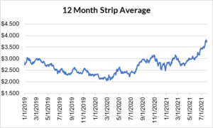 12 month strip for natural gas July 29 2021 report